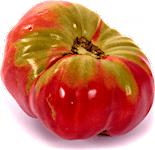 Tomato Jabaliyeh 0.5 kg