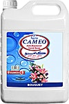 Cameo Anti Bacterial Hand Soap Bouqet  4L