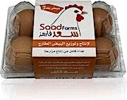 Saad Eggs Baladi 6's