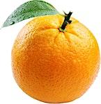 Orange Valencia  - 0.5 kg