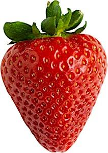 Strawberry Basket 1's