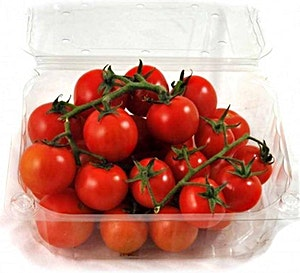 Cherry Tomato Box