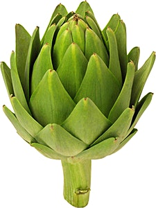 Artichoke Green Extra 1 pc