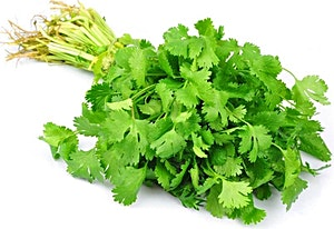 Coriander Bunch 1 pc