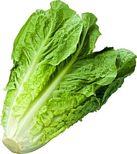 Lettuce 1 pc