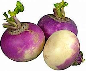 Turnip 0.5 kg