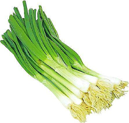 Onion Green 1 Bunch