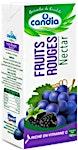 Candia Nectar Fruits Rouges 180 ml